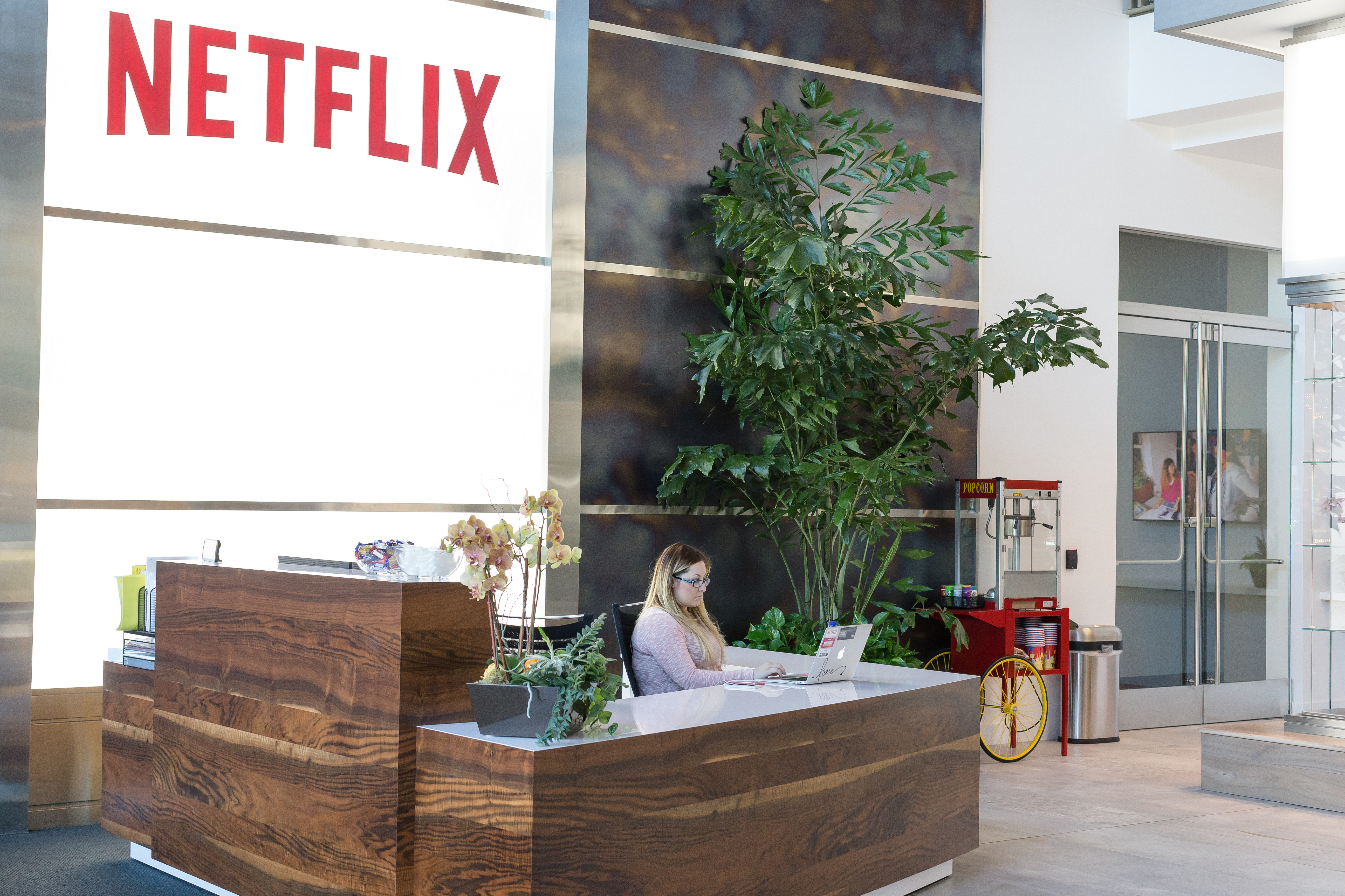 Netflix Earnings: It's More About What Thepany Is Not Doing Flix,  Inc (nasdaq:nflx)  Seeking Alpha