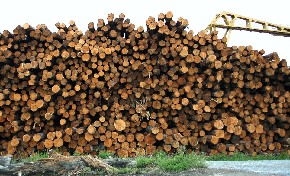 Lumber Approaches The Low - Buying CatchMark Timber Trust On The Dips Offers Exposure To The Price Of Wood