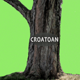 Croatoan Capital