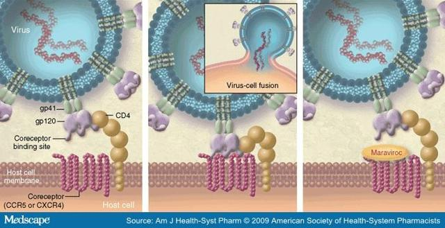 Cytodyn And Hiv Therapy Ccr5 Antagonist Is An Old Drug