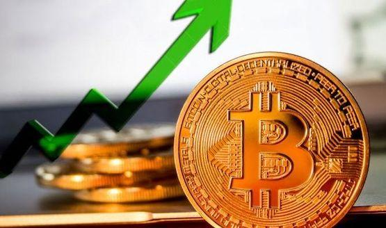 Convert bitcoin gold to usd