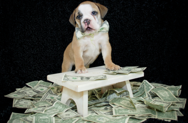 These 108 Top S&P 500 Dogs Fetch Bountiful Yield, Gains, And Upside In June
