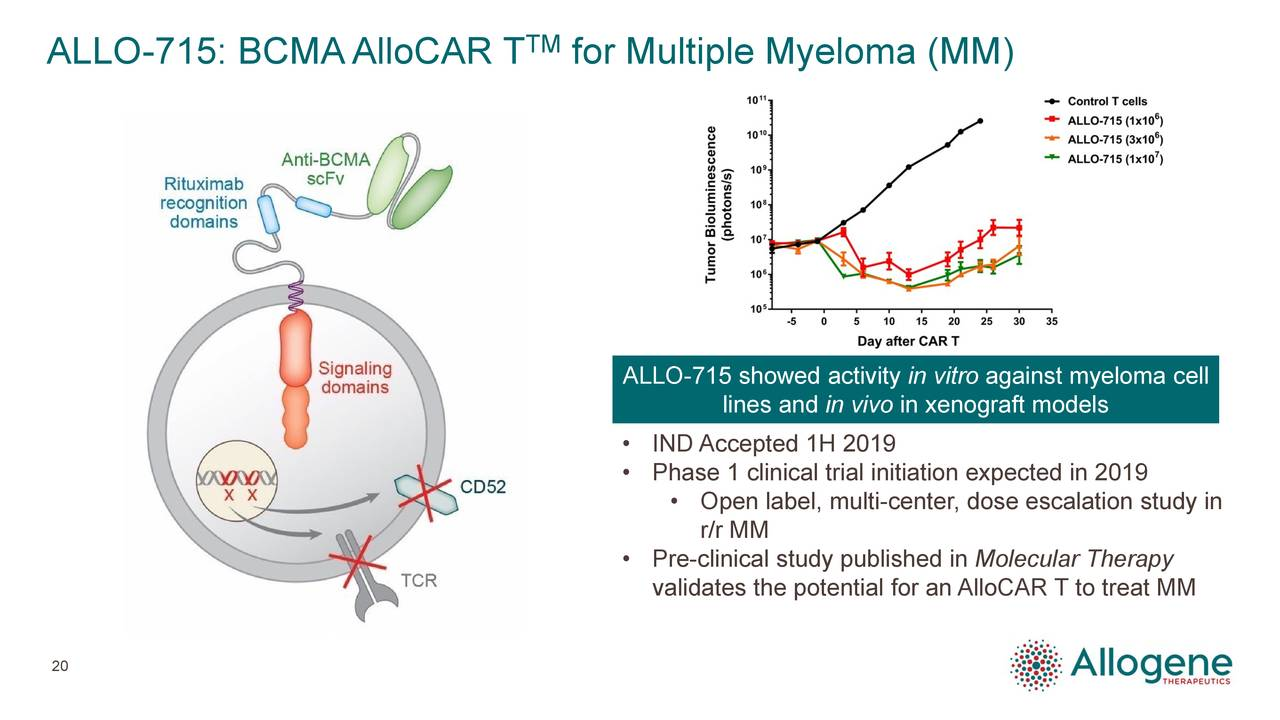 ALLO-715 showed activity in vitro against myeloma cell lines and in vivo in xenograft models • IND Accepted 1H 2019 • Phase 1 clinical trial initiation expected in 2019 • Open label, multi-center, dose escalation study in r/r MM • Pre-clinical study published in Molecular Therapy validates the potential for an AlloCAR T to treat MM 20